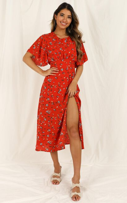 Sweeter Than Sugar Dress in red floral - 20 (XXXXL), Red, hi-res image number null
