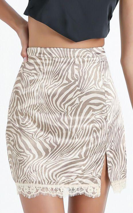 Banba Skirt in Zebra