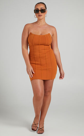 Cianna Panelled Mini Dress in Camel