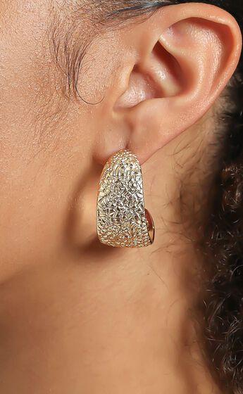 Biancah Hoop Earrings in Gold