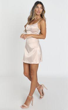 Charlotte Dress In Nude