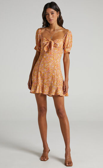 Rosa Dress in Blushing Floral