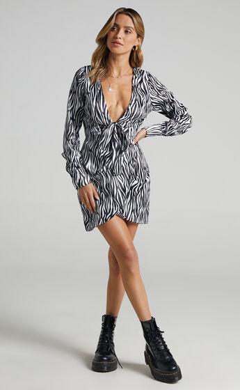 Dunoon Dress in Zebra