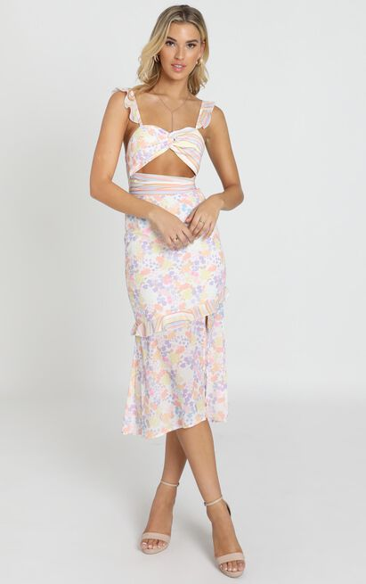 Take My Picture Dress in multi floral stripe - 20 (XXXXL), Blush, hi-res image number null