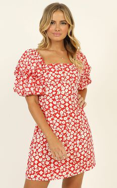 Parisian Spring Dress In Red Floral