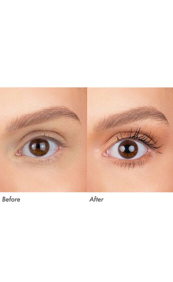 Modelco - Ultra Eyeshadow Palette in Brown