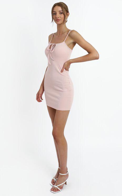 Flora Dress in Blush