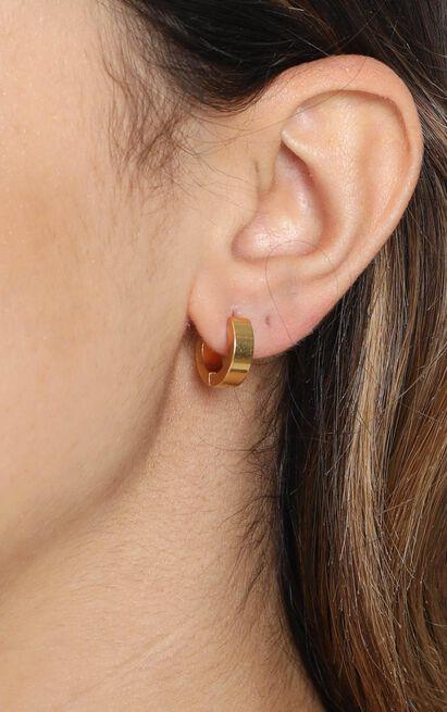 Peta and Jain - Seline Earrings in Gold, , hi-res image number null