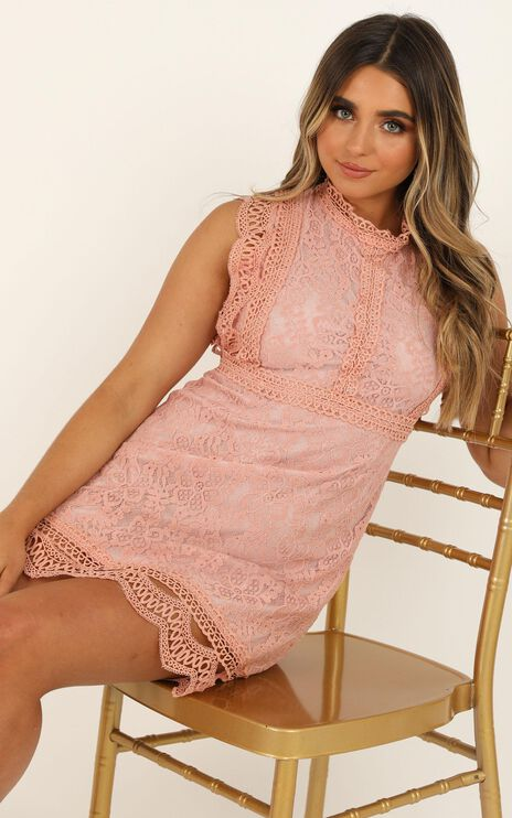 Steady Motion Dress in Blush Lace