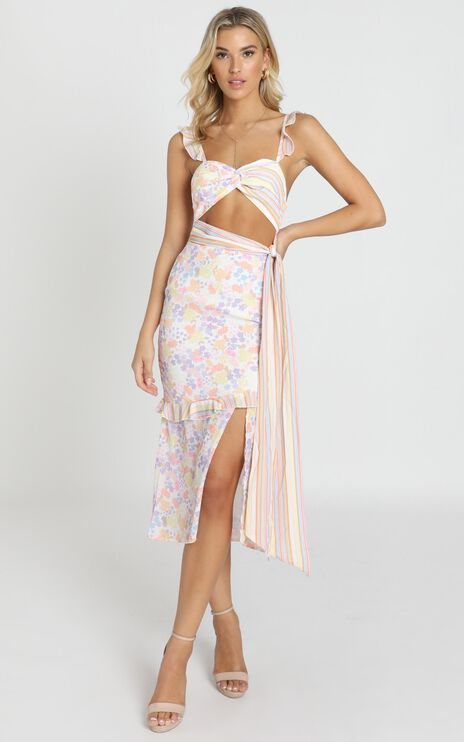 Take My Picture Dress in Multi Floral Stripe