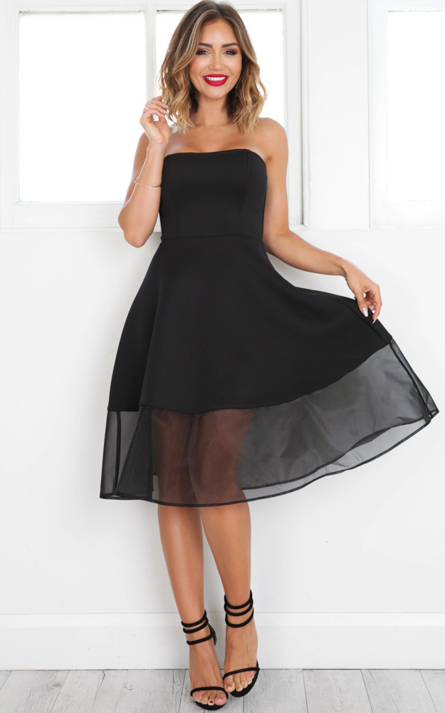 Picture Perfect Dress in black - 14 (XL), Black, hi-res image number null