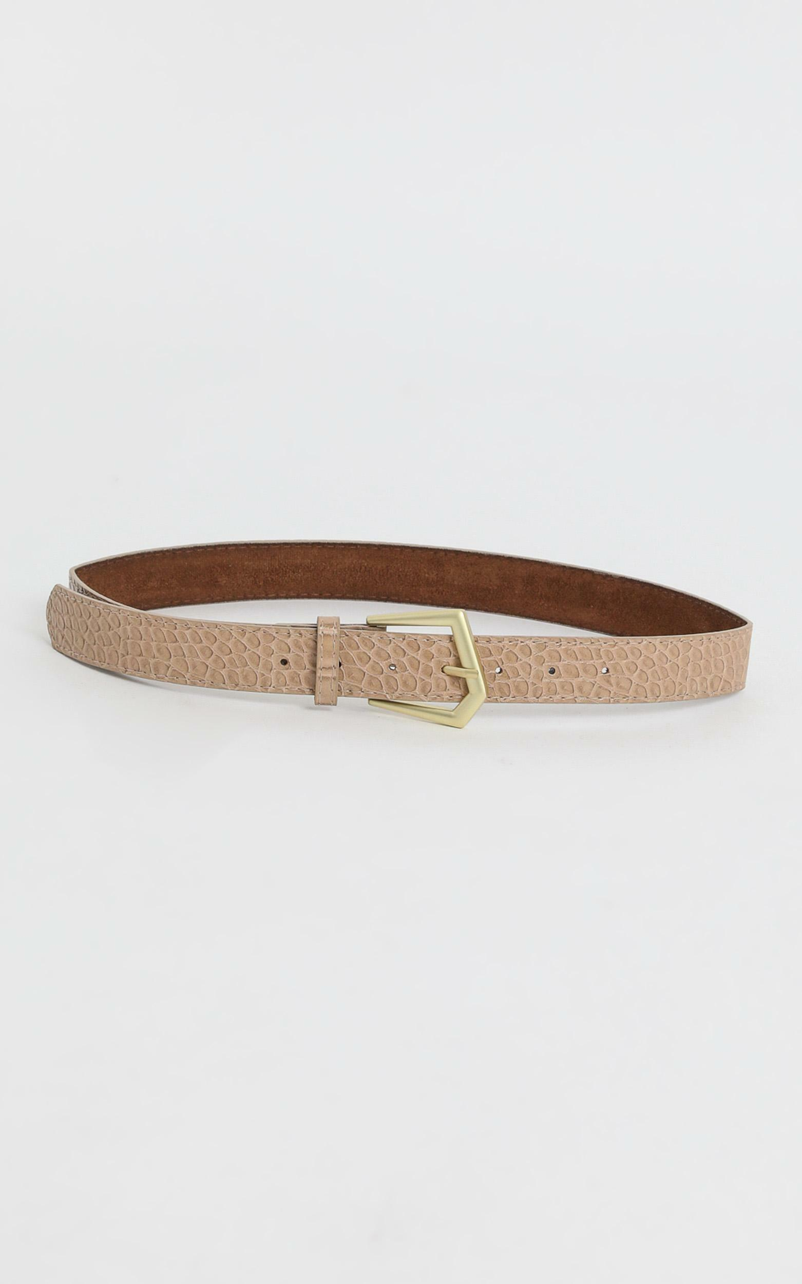 Simple Favours Belt in Nude and Gold, , hi-res image number null