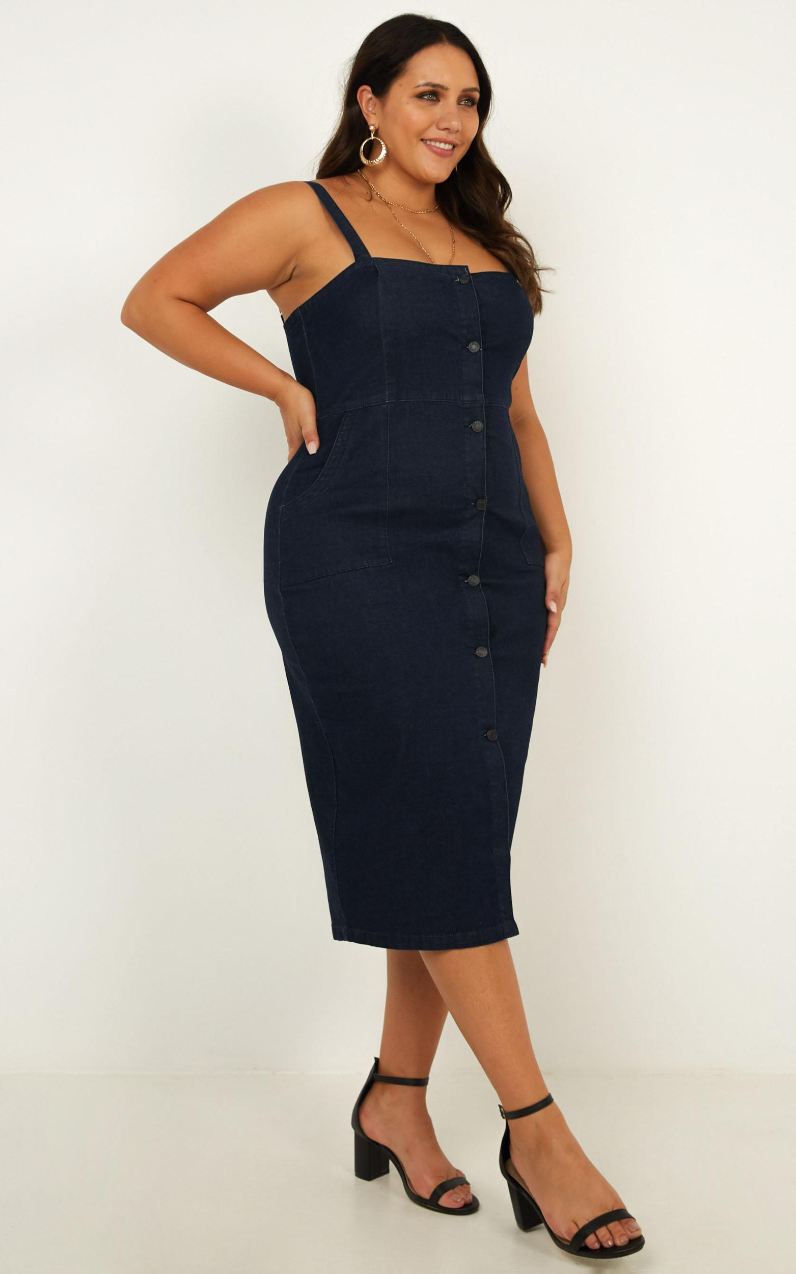 Bronwyn Denim Dress in dark blue wash - 12 (L), Blue, hi-res image number null